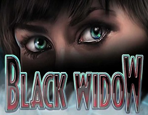 Black Widow Casino Game